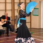flamenco-06